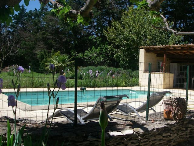 Piscine enclos. Swimming pool with security fencing.