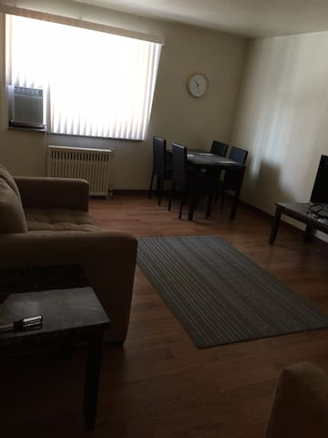 Sunny Spacious Shadyside 1 bedroom - Pittsburgh - Appartement