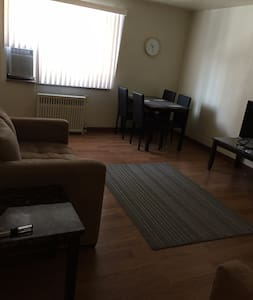 Sunny Spacious Shadyside 1 bedroom - Pittsburgh - Flat