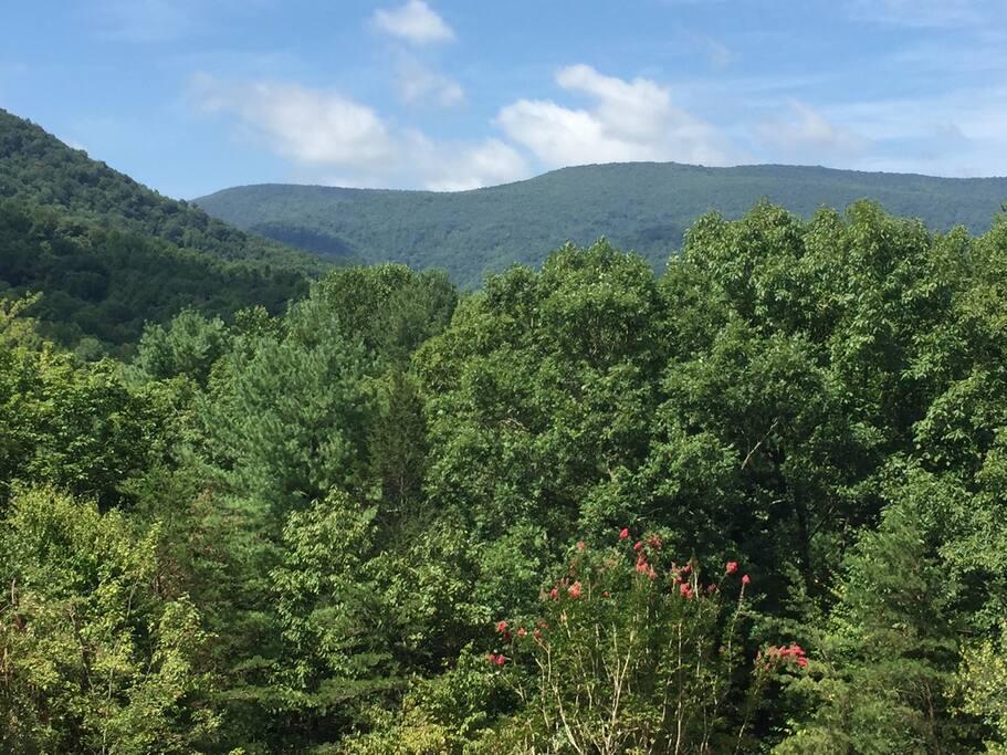 Gorgeous Blue Ridge Mountain Views