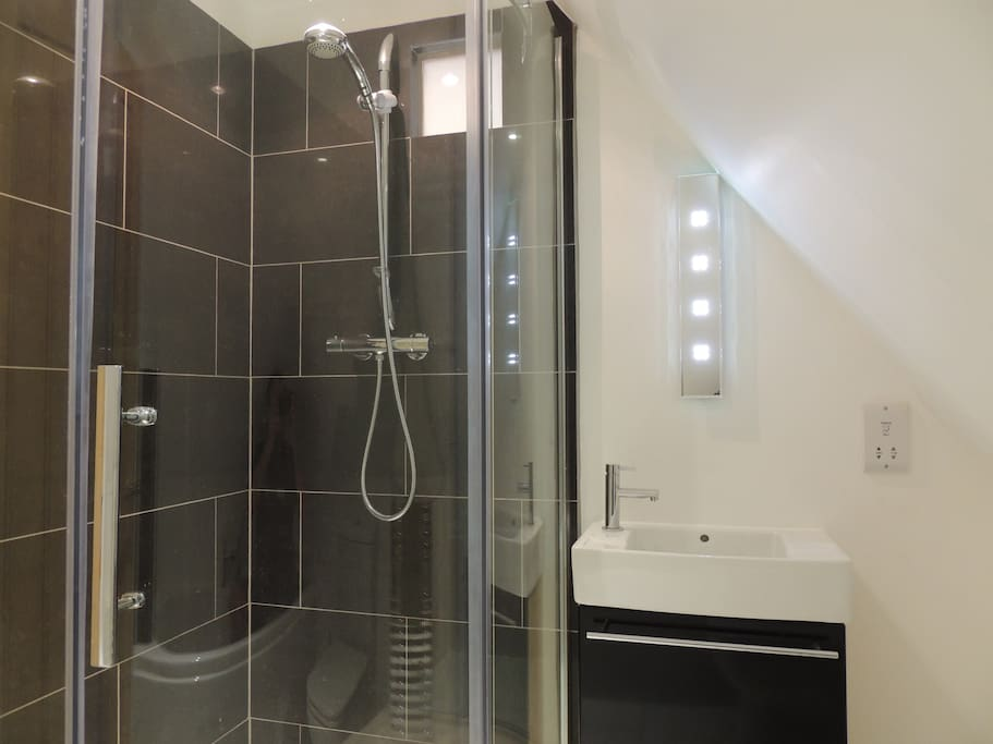 Bathroom with separate shower and bath.