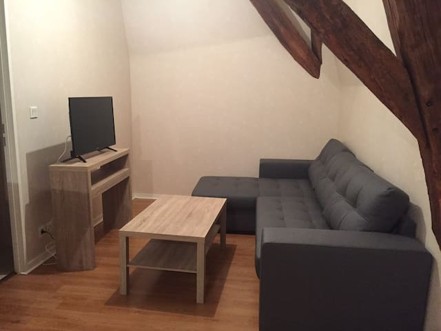 Joli appartement T2 à 5 min de BRIVE - Cosnac - Apartment