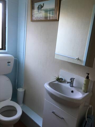 Bathroom (step-up shower behind 'camera')