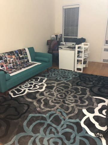 Large living room, near transit, gym, super clean