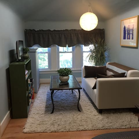 Private 3rd Floor Suite - Oak Park - House
