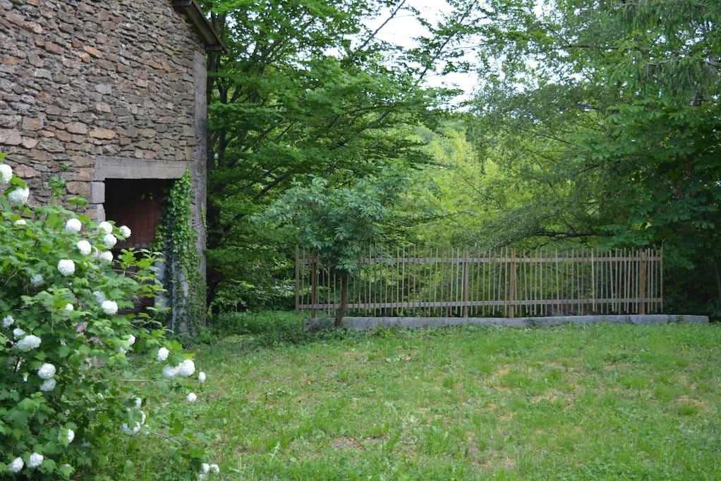 Une partie du jardin