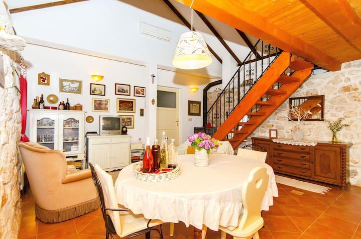 Rusula contry house - Vrsine - House