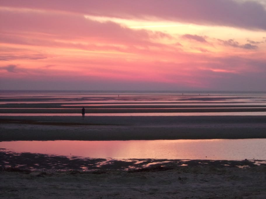 Close to Ocean beaches and bay beaches too: Like First Encounter Beach where Pilgrims first met the Native Americans. At low tide you can walk a great distance out on the flats