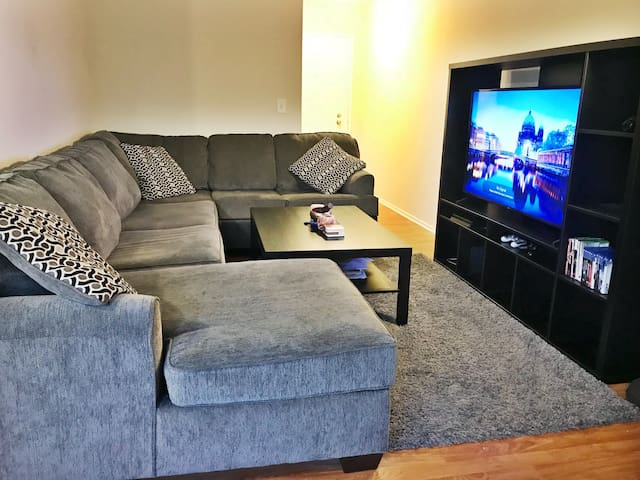 Central, Cozy, Welcoming, One Bedroom Apartment