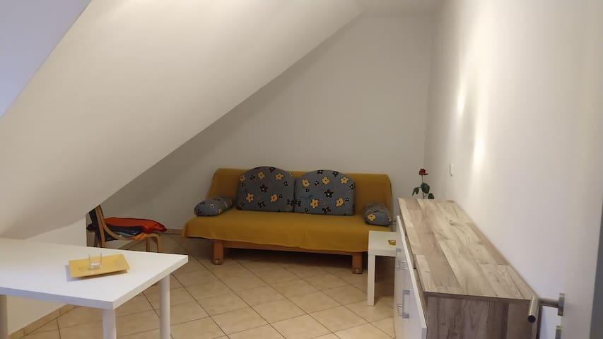 Guestroom in cozy apartment close to Frankfurt