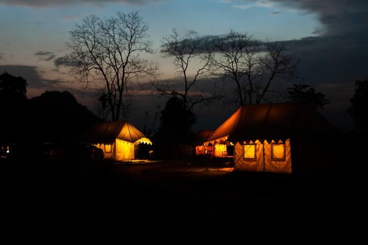 Swiss Tent 3 near River Brahmaputra at Pobitora