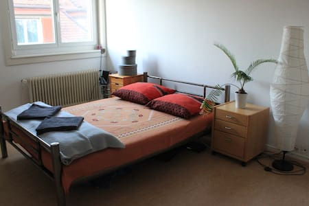 Bright, furnished double room in Zurich - Apartment