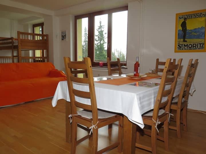 Apartment Tucek, Strbske Pleso