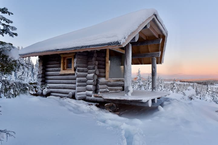 "Logcabin ""mad muskox"", close to the wildeness"