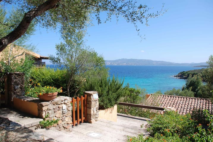Sardegna, Palau:spiaggia, piscina,spa,tennis,parco