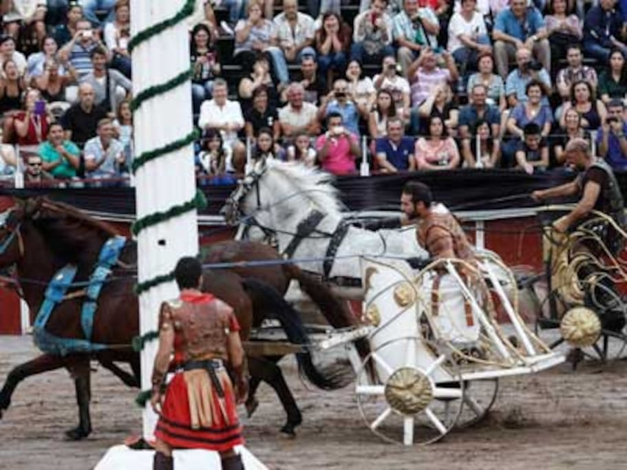 Fiesta de Carthagineses y Romanos del 15 al 24 de Septiembre.