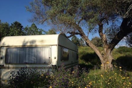 Spacious caravan in rural setting - Vale de Prazeres - Annat