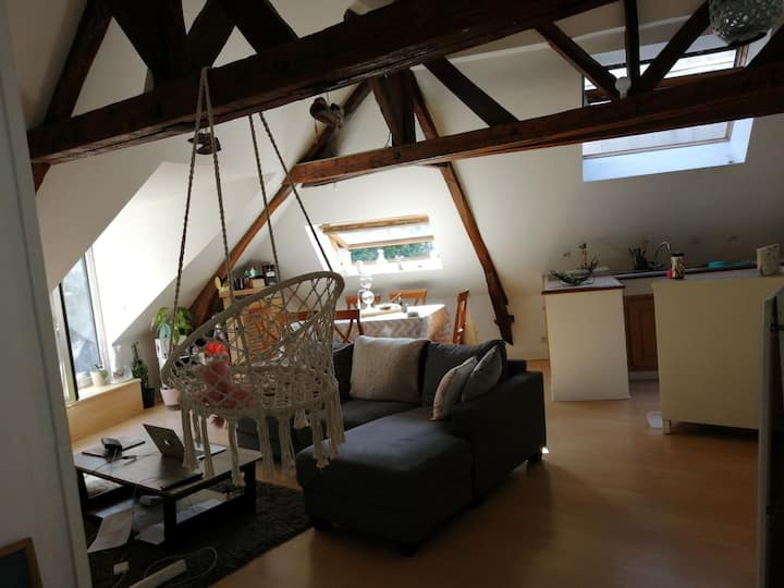 Appartement cosy & confortable, Hennebont centre