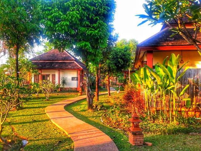 Palm Spa Village 可以带宠物入住 适合发呆的稻田别墅