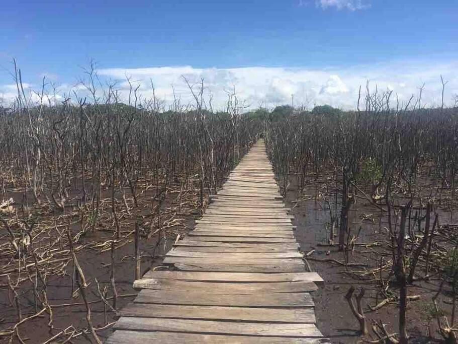 El puente de playa Avellanas, en Guanacaste, se ha convertido en un hermoso ícono turístico que ha sido fotografiado en numerosas ocasiones.