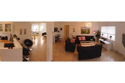 Down Town Tórshavn - Large Apartment