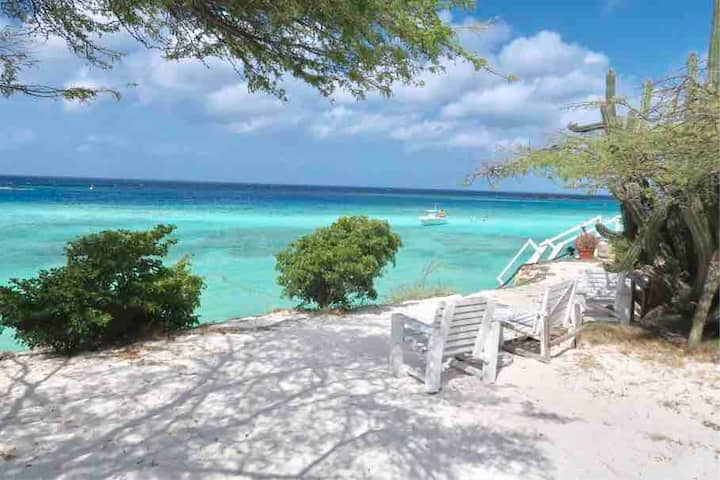 Ocean Front Villa in Aruba - Stunning 20% off now