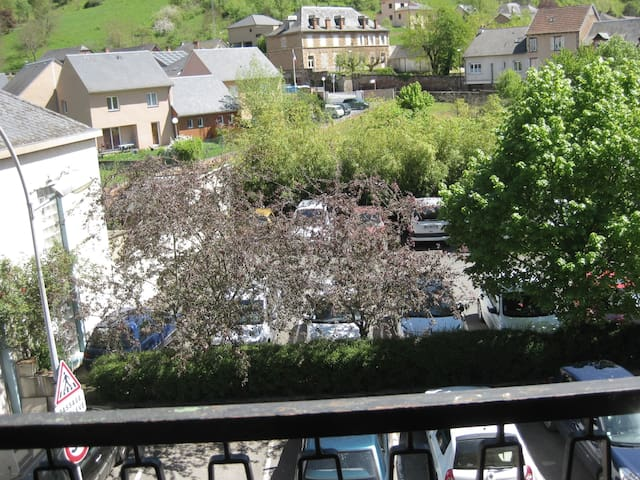 Appartement tout confort 2em etage - Marcillac-Vallon - Apartment
