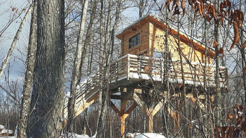 Cabane dans les arbres d'en haut - Amherst - Baumhaus