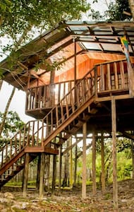 THE TREE HOUSE!!