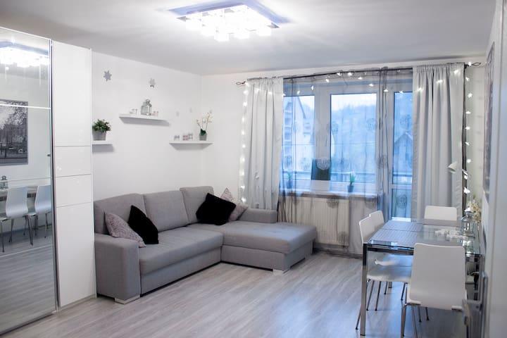 Apartment near Jaworzyna Krynicka - Krynica-Zdrój - Byt
