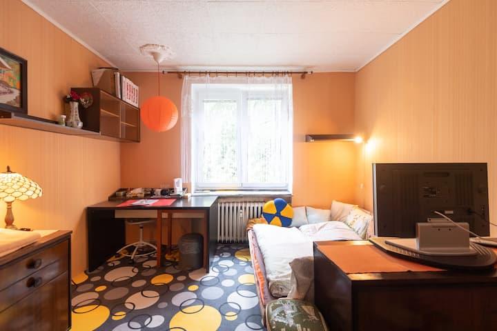 Ubytování v širším centru, Praha 6