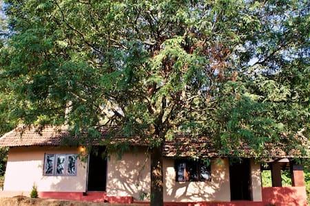 Under the Tamarind Tree (Room #1)