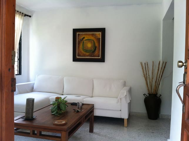 Cozy Private Apartment in the Center of the City - Santo Domingo - Leilighet
