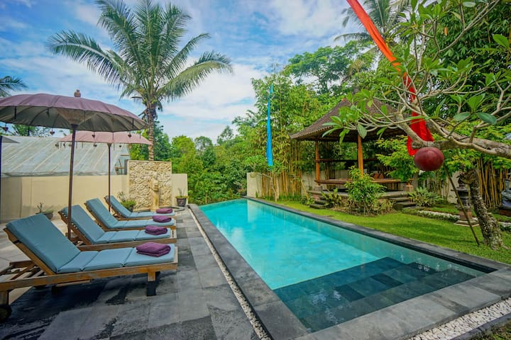 3 Bd Private Villa with pool & Breakfast in Ubud