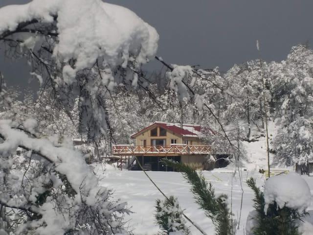 cabaña en Malalcahuello,  a orilla  del río.