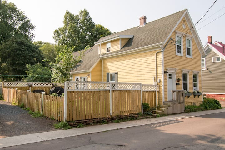 Charming newly updated historic downtown home
