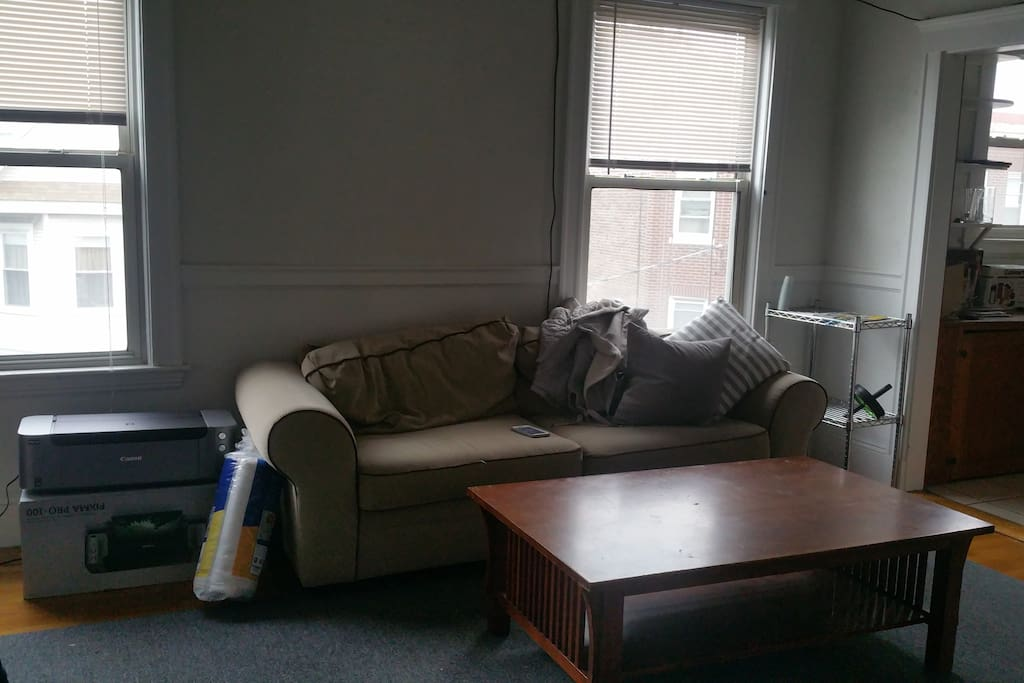 Sunny living room with a comfortable couch