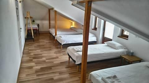 Νίκαια σοφίτα οικογένεια/ομάδα δωμάτιο με ιδιωτικό μπάνιο