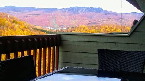 Great Panoramic Views/ KING bed/ WiFi Netflix