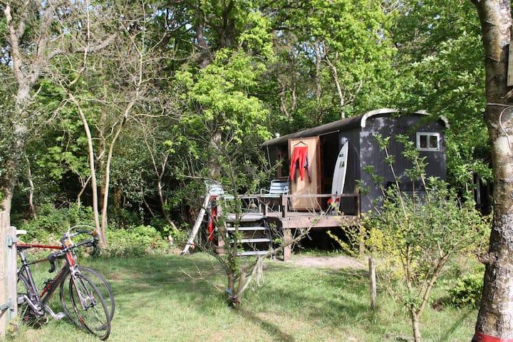LA SUD woonwagen aan de bosrand