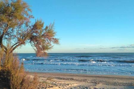Casita acogedora en playa salvaje con dunas,WIFI