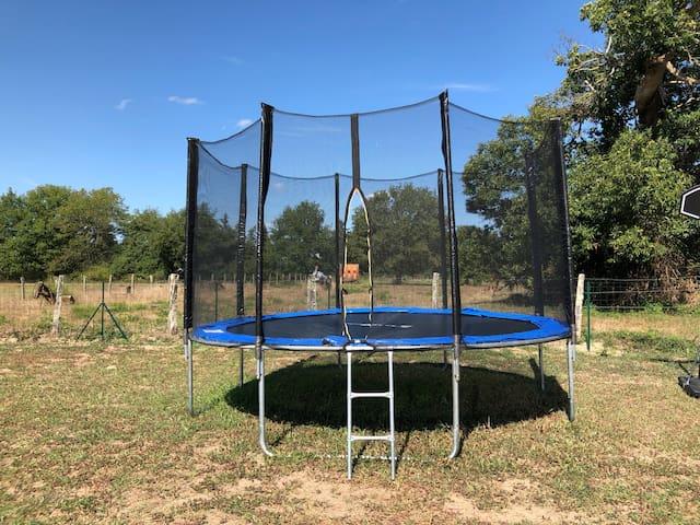 Grand trampoline sécuriser pour vos enfants