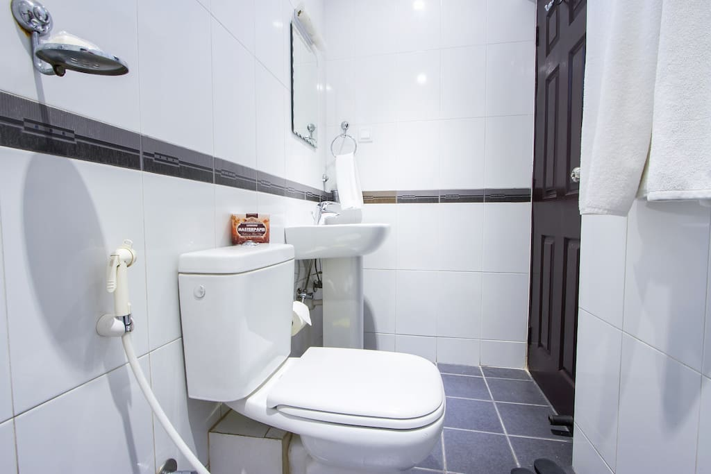 Sparkling clean Toilet/Bathroomwith Real Western Standards,Two Bedroom Standard Apartment