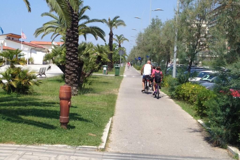 bike path along the beach