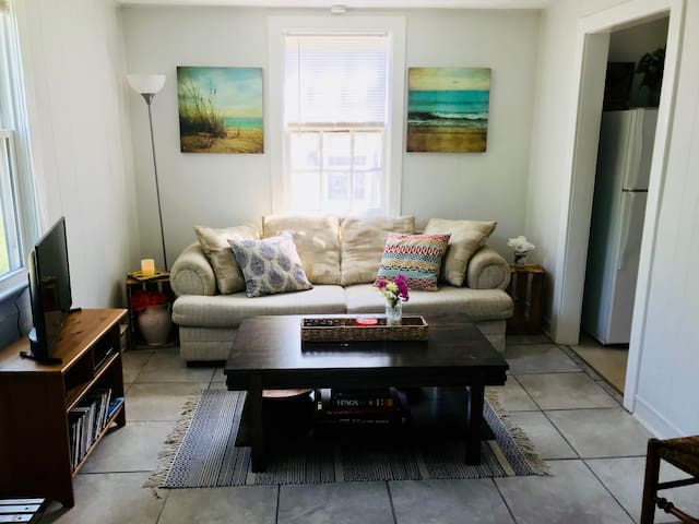Living Room with pull-out bed