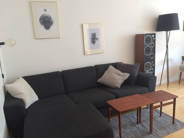 Lovely apartment with a great location! - Frederiksberg - Apartment