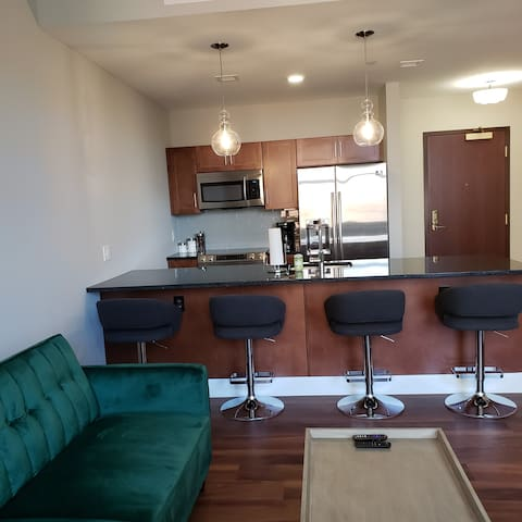 Luxury 1 Bedroom In the Heart of Downtown