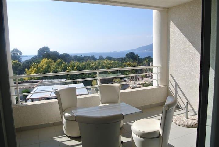Agréable studio bien exposé avec balcon aménagé et magnifique vue mer