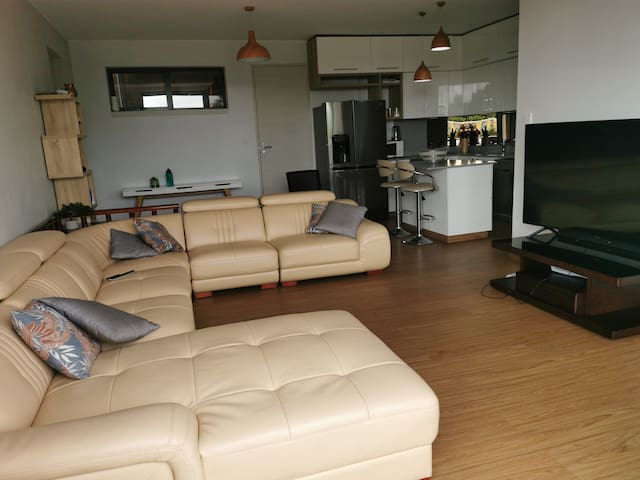 Luxury fully furnished apartment.