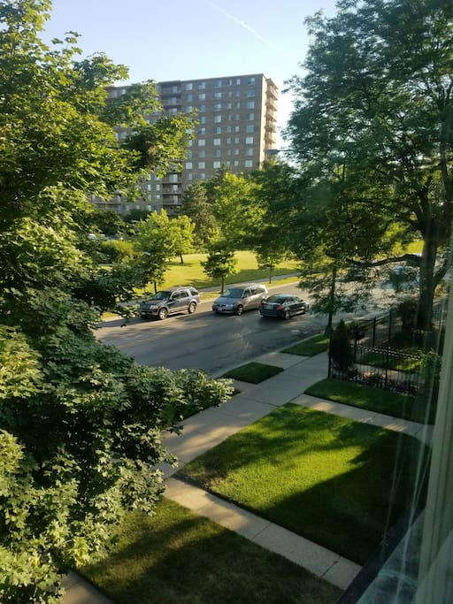 View from my window of the beautiful park